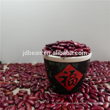 Hot sale quality Natural Brown English red kidney bean with Best qualtiy